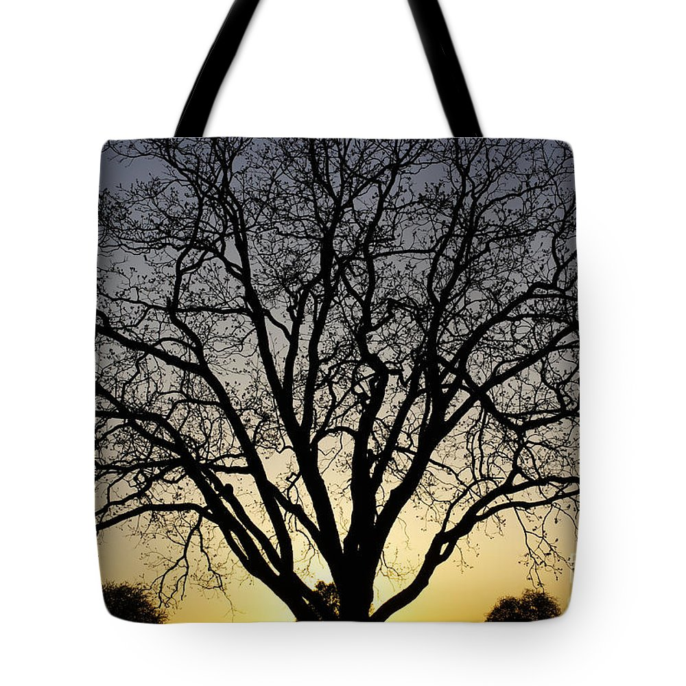 Sunset Tote Bag featuring the photograph Sunset Tree by Gary Richards