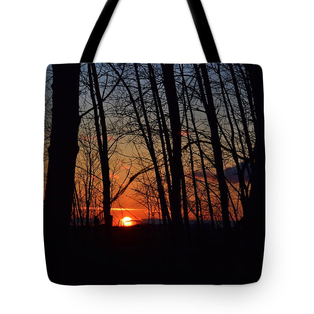 Sunset Tote Bag featuring the photograph Sunset Trees by Mark Hudon