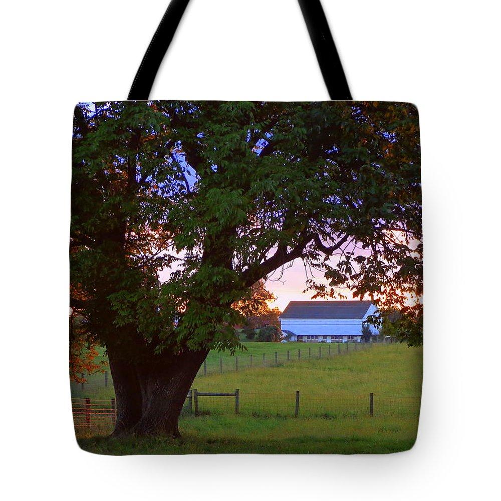 Joseph Skompski Tote Bag featuring the photograph Sunset With Tree by Joseph Skompski