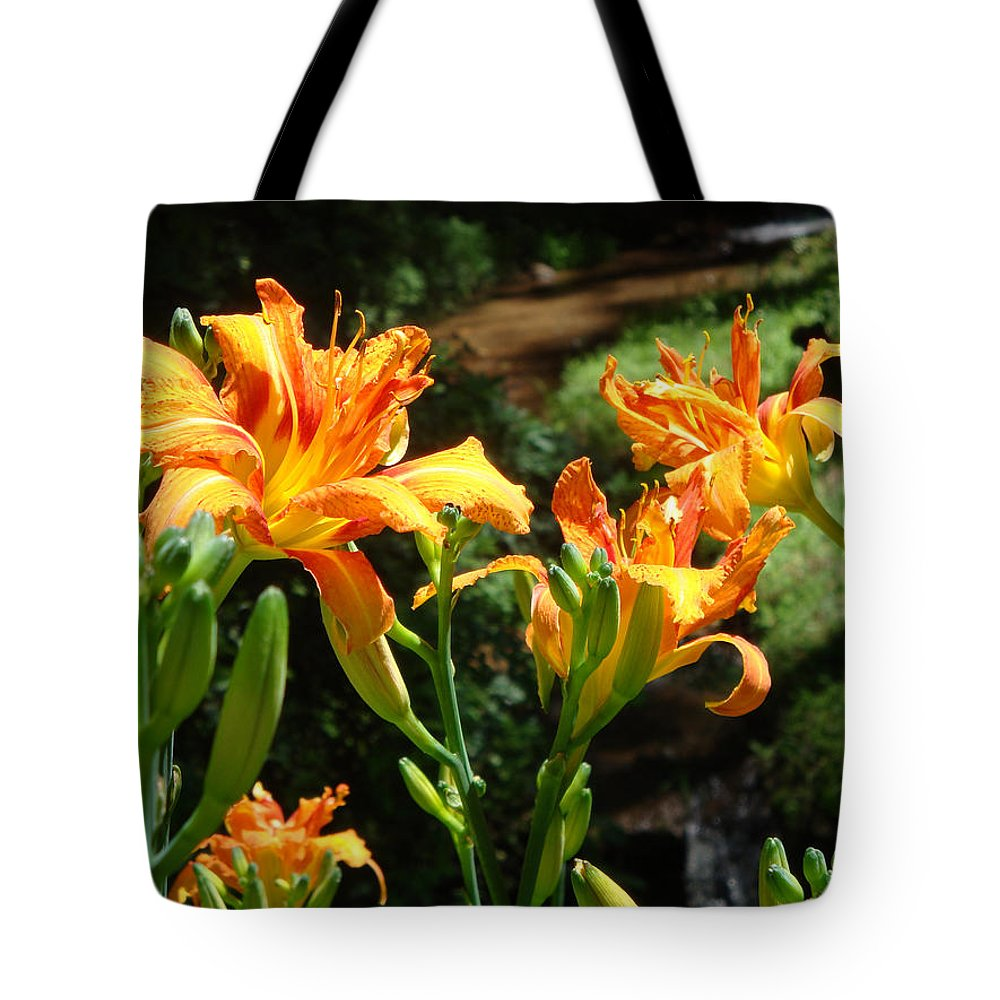 Daylily Tote Bag featuring the photograph Sunshine by Jean Blackmer