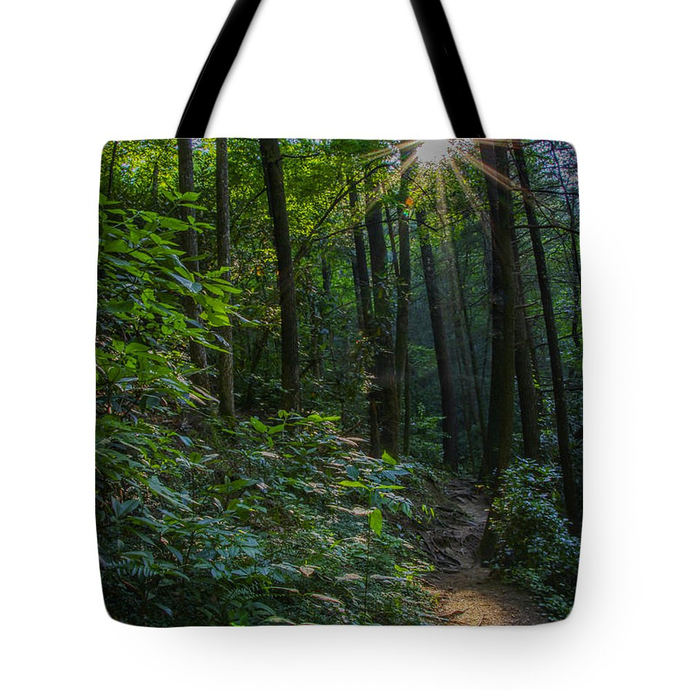 Panther Creek Trail Tote Bag featuring the photograph Sunstar Along The Trail by Barbara Bowen
