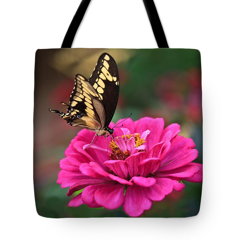 Swallowtail Tote Bag featuring the photograph Swallowtail Butterfly by Beth Sargent