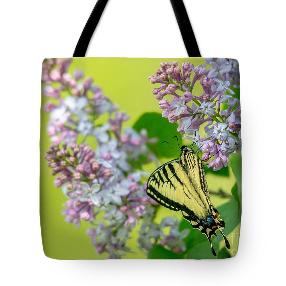 Landscape Tote Bag featuring the photograph Swallowtail Butterfly by Cheryl Baxter