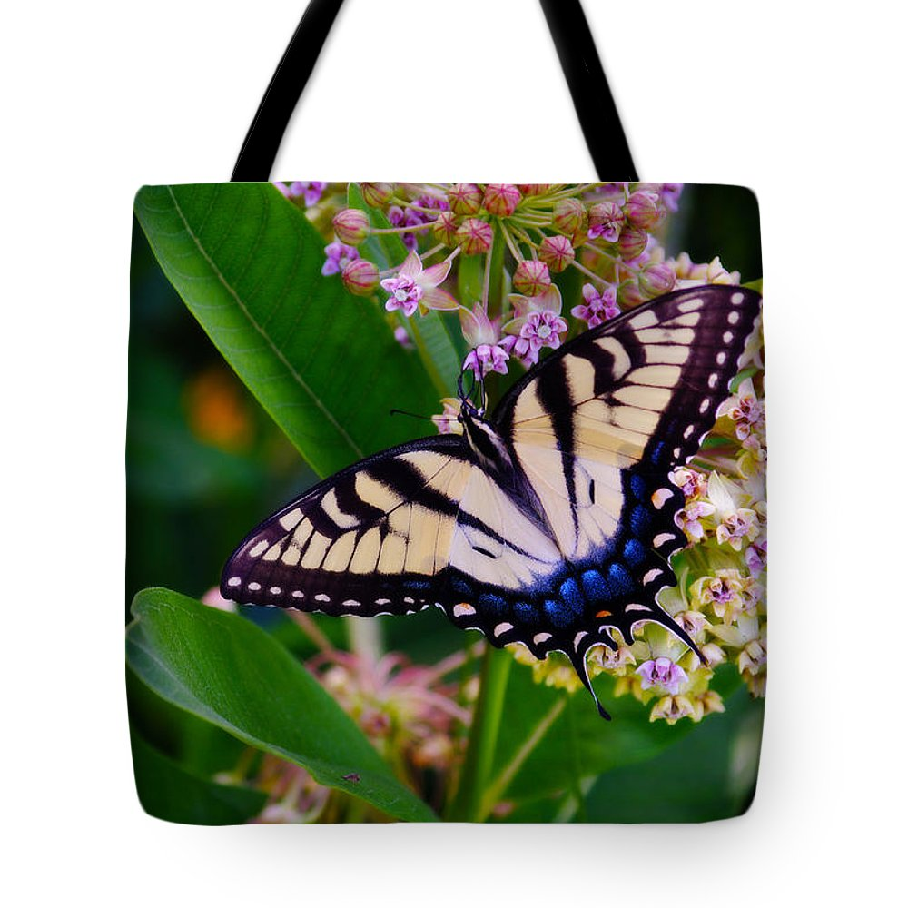 Swallowtail Tote Bag featuring the photograph Swallowtail by Merrill Miller