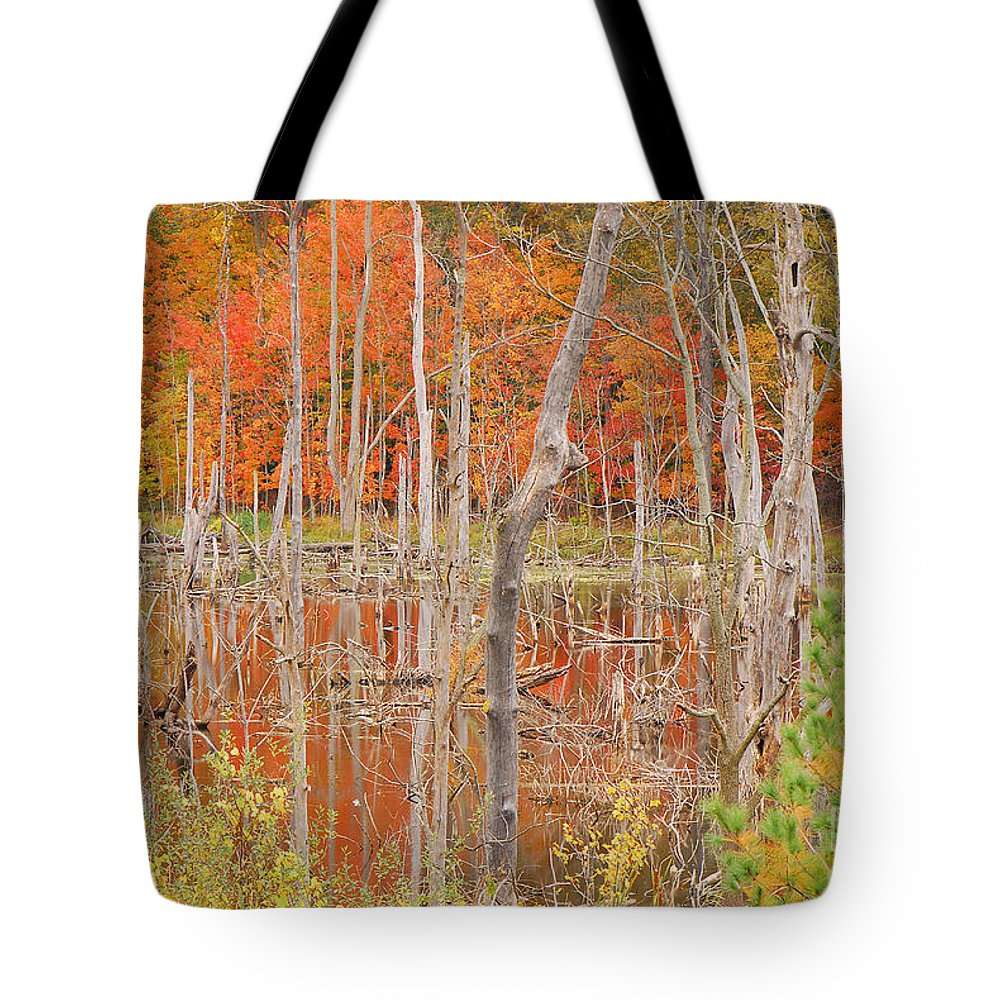 Indiana Tote Bag featuring the photograph Swamp Colors by Mary Carol Story