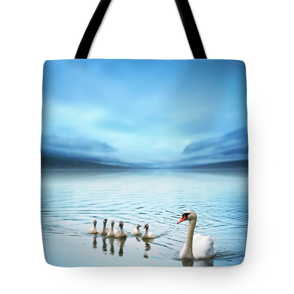 Scenics Tote Bag featuring the photograph Swan Family On The Lake by Borchee