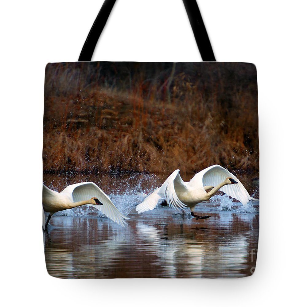 Swans Tote Bag featuring the photograph Swan Lake by Mike Dawson