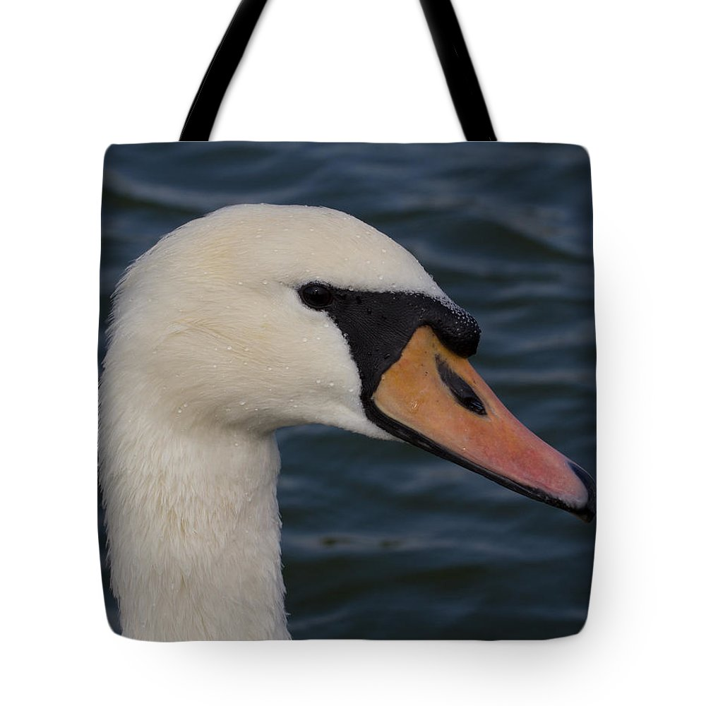 Bird Tote Bag featuring the photograph Swan by Leah Palmer
