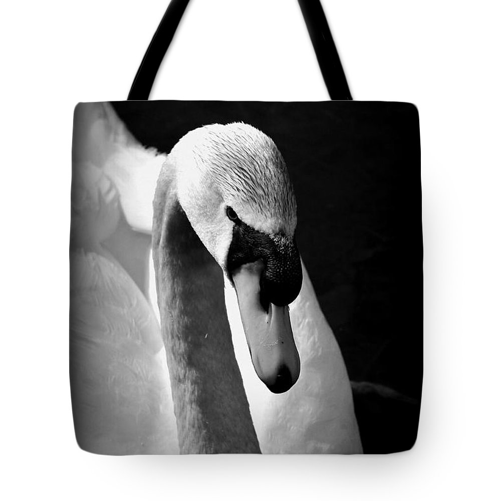 Swan Tote Bag featuring the photograph Swan Of Plymouth by Catherine Reusch Daley