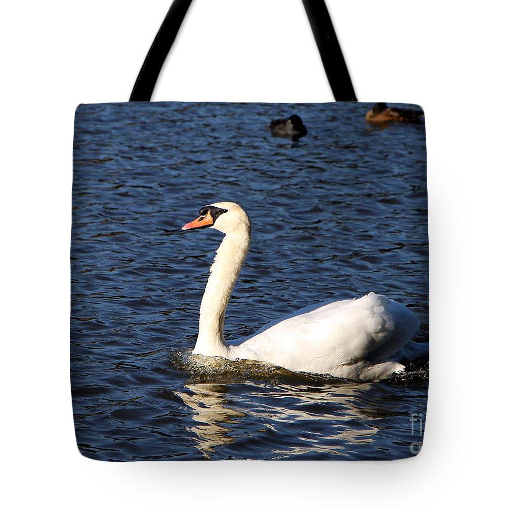 Swan Tote Bag featuring the photograph Swan Swim by Brigitte Mueller