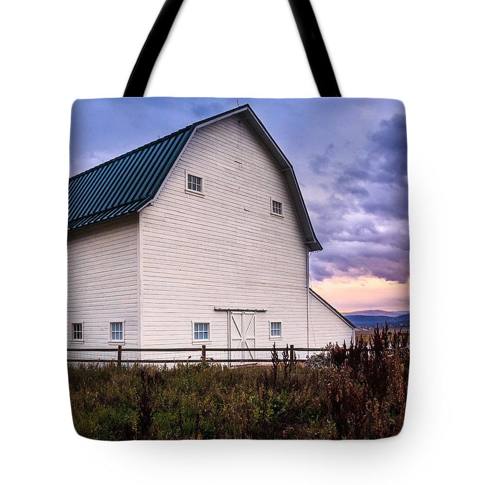 Gigimarie Tote Bag featuring the photograph Swaner Dawn by Gina Herbert