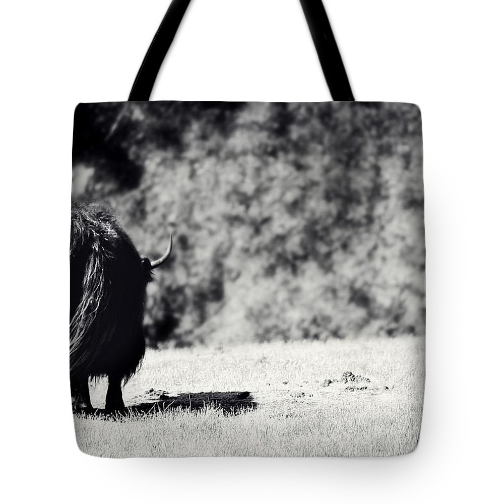 Yak Tote Bag featuring the photograph Swaying In The Wind by Melanie Lankford Photography