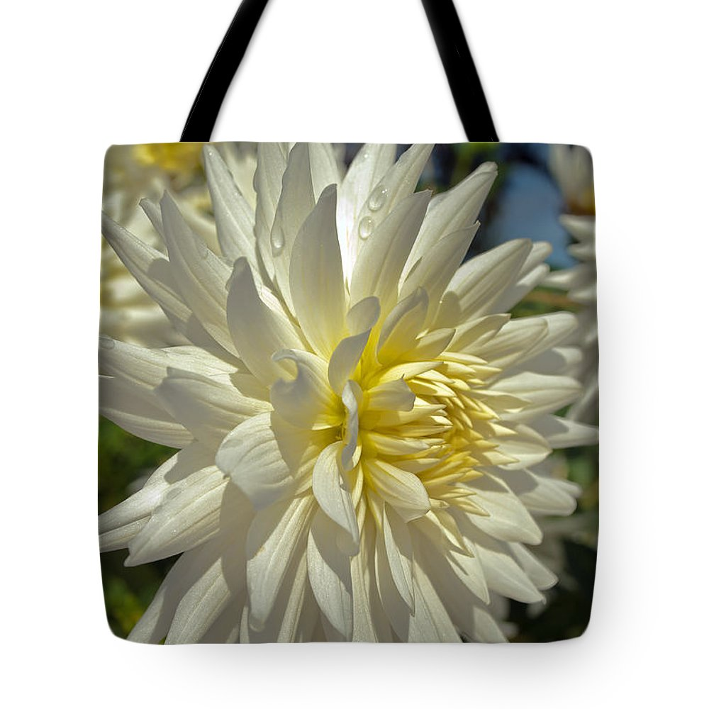 Flower Tote Bag featuring the photograph Sweating Dahlia by Tikvah's Hope