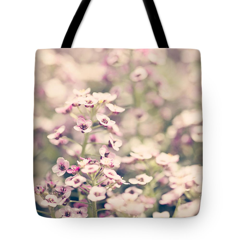 Purple Tote Bag featuring the photograph Sweet Alyssum by Erin Johnson