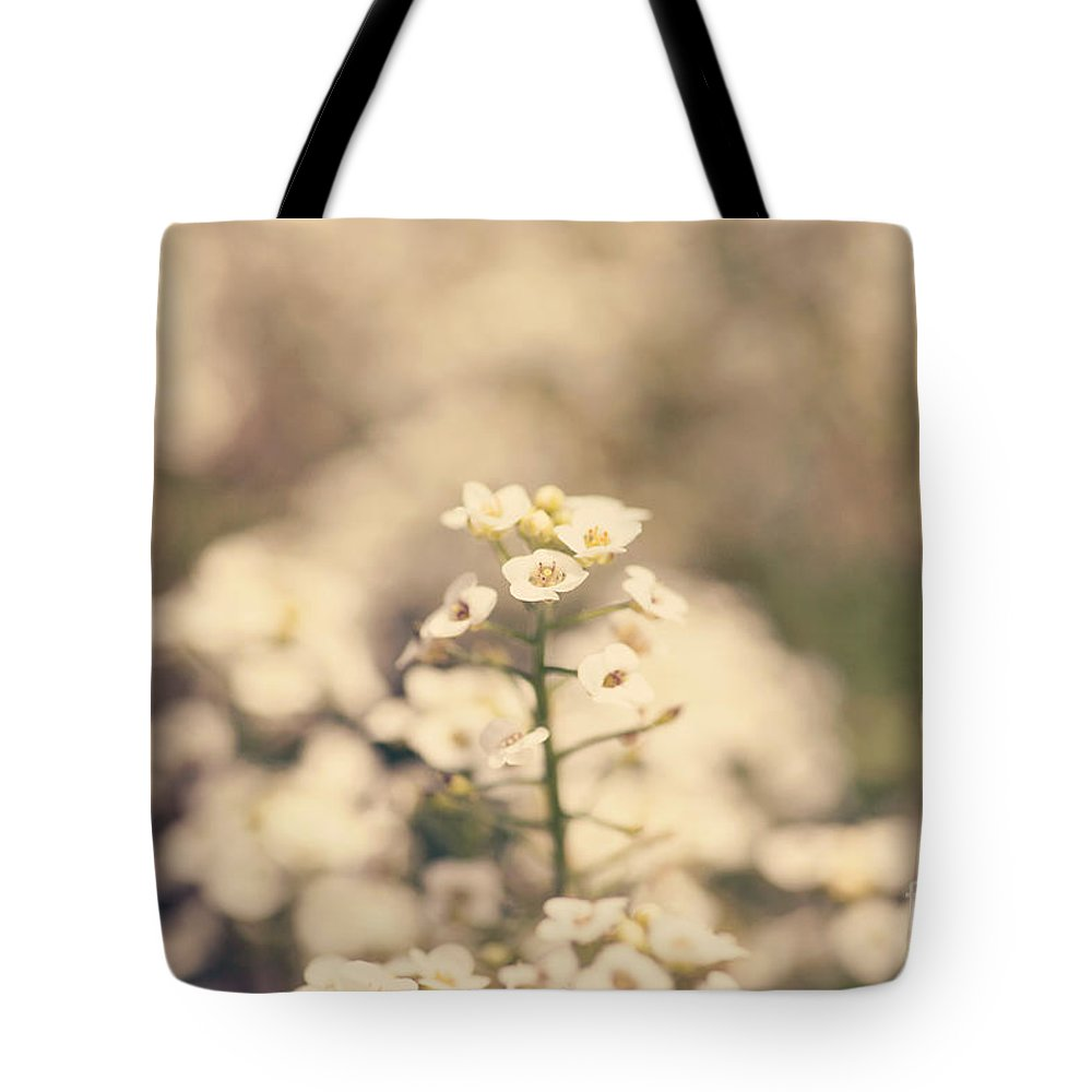 Plant Tote Bag featuring the photograph Sweet Alyssum White by Erin Johnson