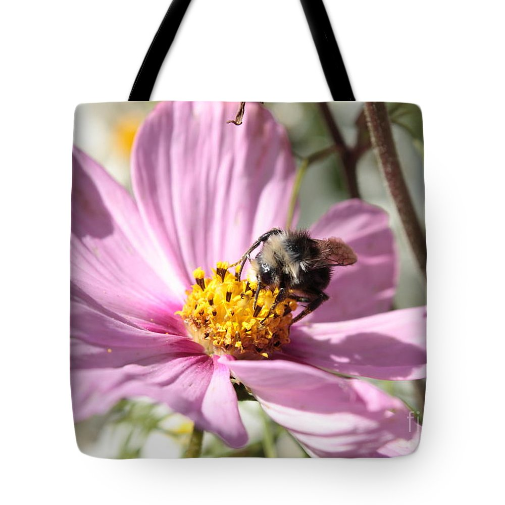 Pink Cosmos Tote Bag featuring the photograph Sweet Bee On Pink Cosmos by Carol Groenen