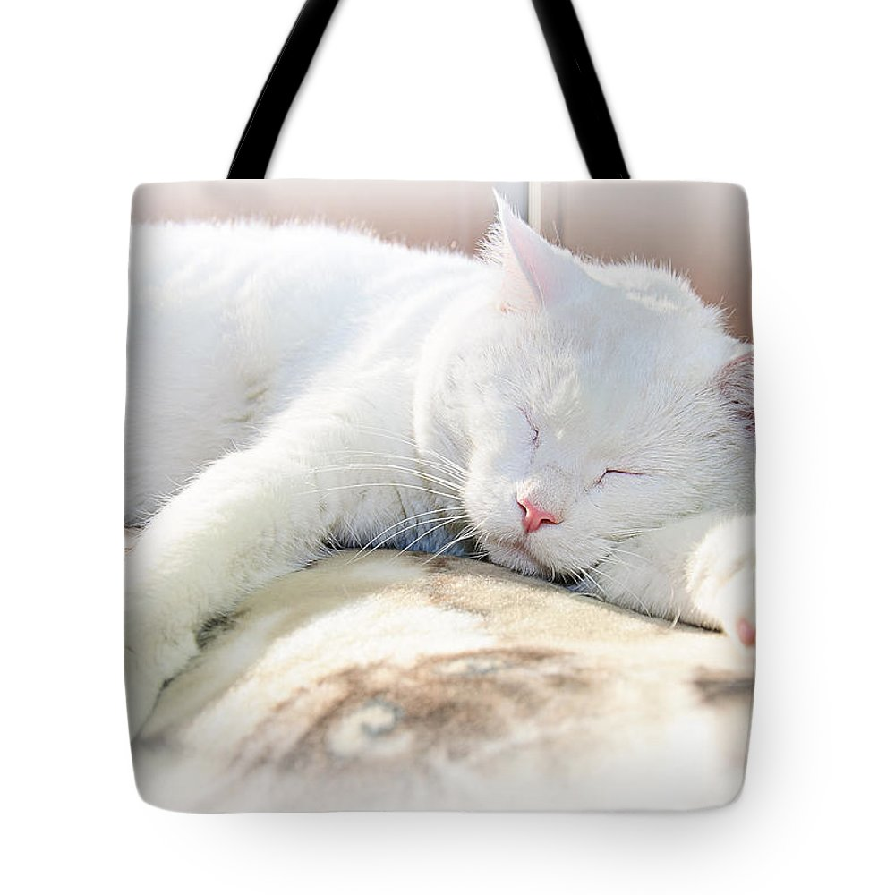 Andee Design Cats Tote Bag featuring the photograph Sweet Dreams by Andee Design