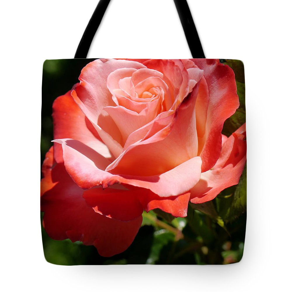 Rose Tote Bag featuring the photograph Sweet Rosie by Christiane Schulze Art And Photography