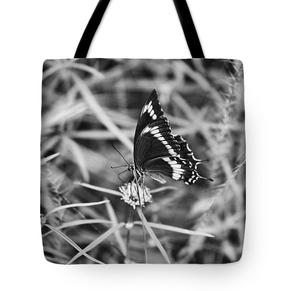 Butterfly Tote Bag featuring the photograph Sweet Seduction Black And White by Douglas Barnard