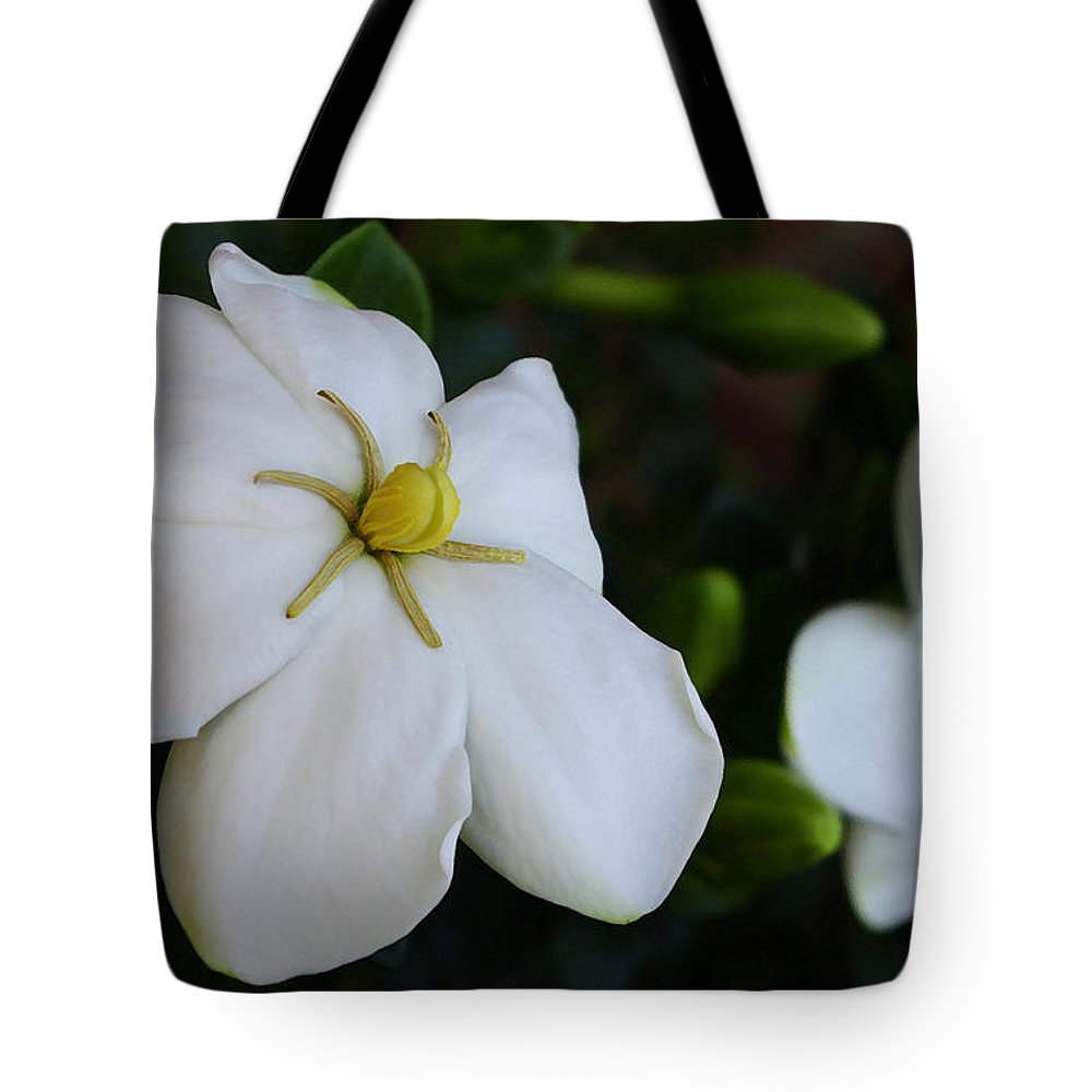 Gardenia Tote Bag featuring the photograph Sweet Smell Of Gardenias by James C Thomas
