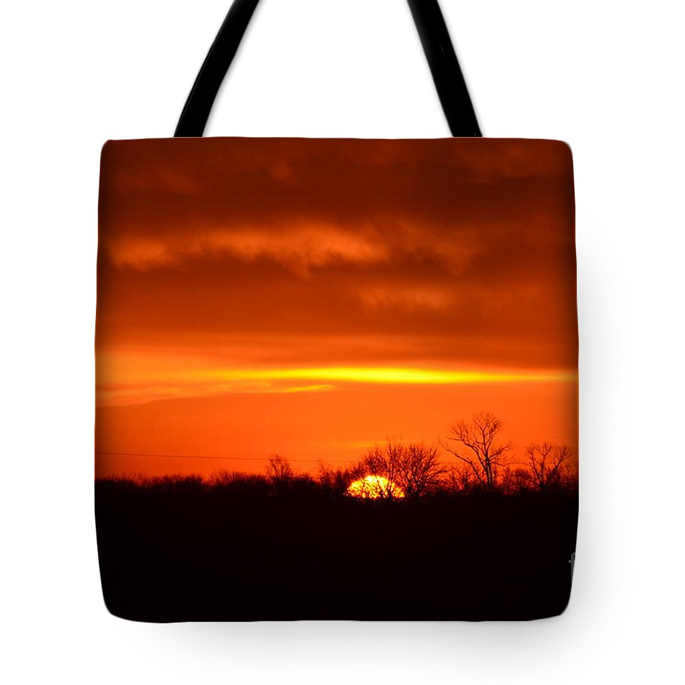 Sun Tote Bag featuring the photograph Sweet Tangerine by Carlee Ojeda