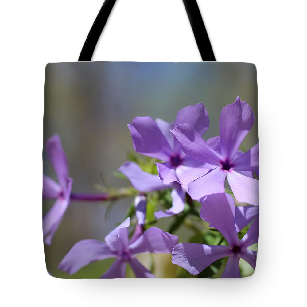 Flower Tote Bag featuring the photograph Sweet William Purple Wildflower Springtime by Adam Long