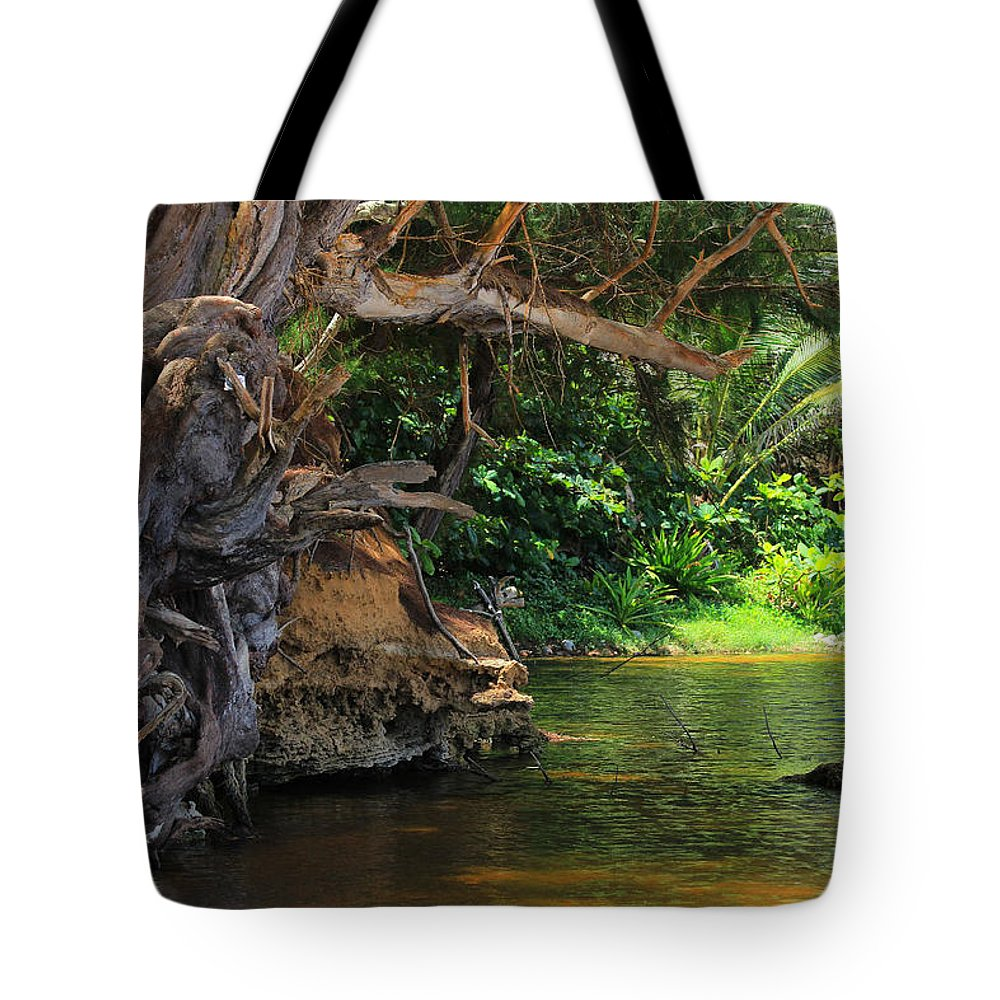 Kauai Tote Bag featuring the photograph Swimming Hole by Kris Hiemstra