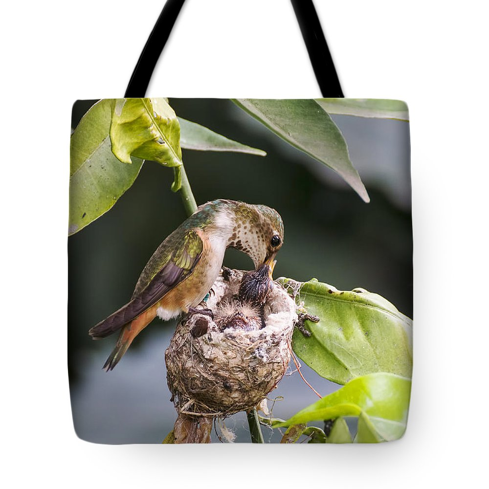 Bird Tote Bag featuring the photograph Sword Swallower by Mike Herdering
