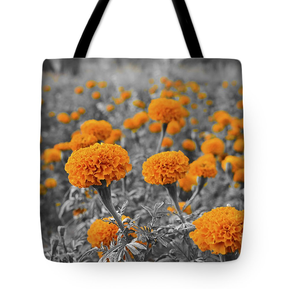 Tagetes Erecta Tote Bag featuring the photograph Tagetes Erecta / Aztec Marigold Flower by Image World