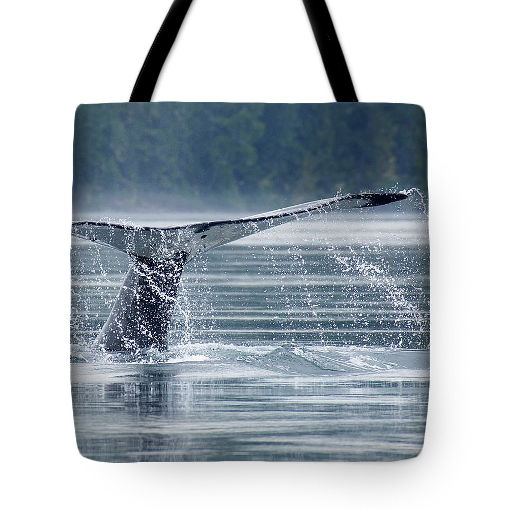 One Animal Tote Bag featuring the photograph Tail Of Humpback Whale by Grant Faint
