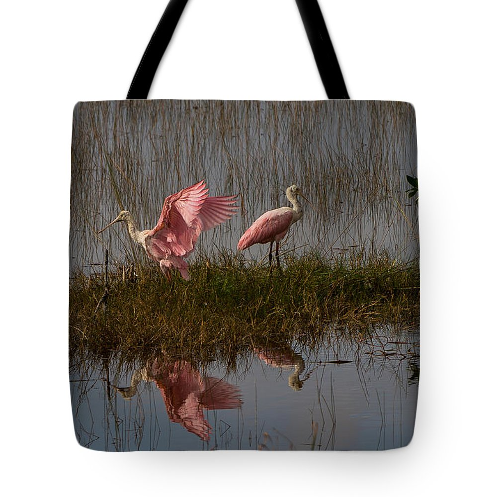 Birds Tote Bag featuring the photograph Taking Flight by Amy S Klein