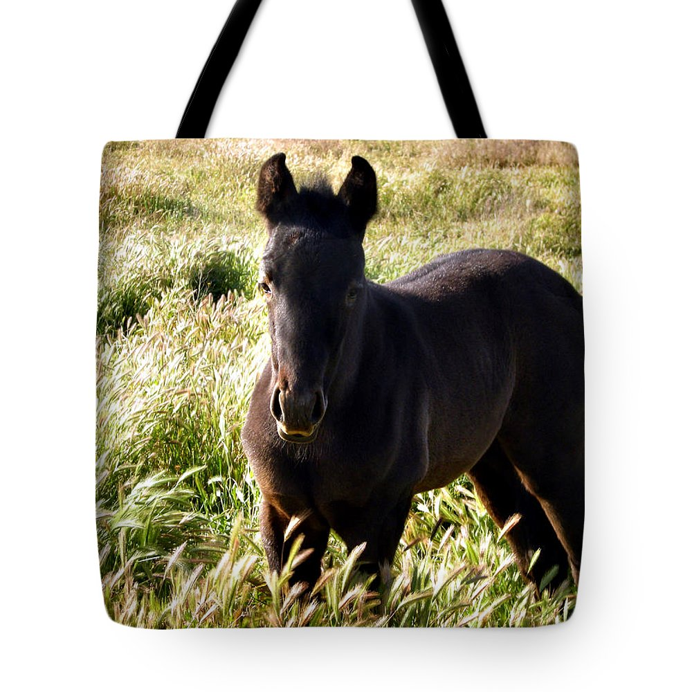 Colt Tote Bag featuring the photograph Tall Grass by SJ Crown