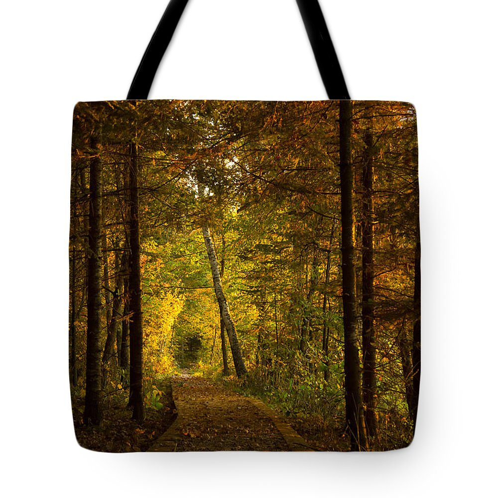 Autumn Tote Bag featuring the photograph Tamarac Boardwalk by Penny Meyers