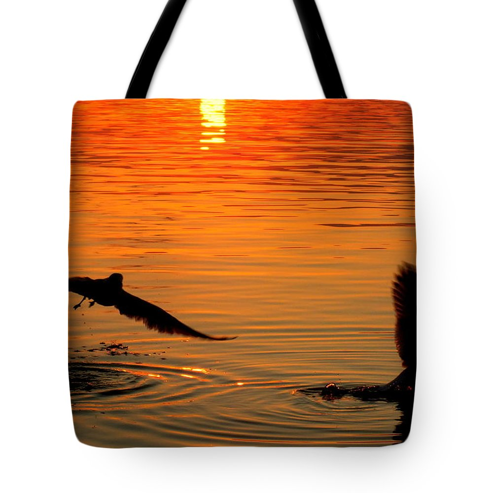 Seagulls Tote Bag featuring the photograph Tangerine Moonlight by Karen Wiles