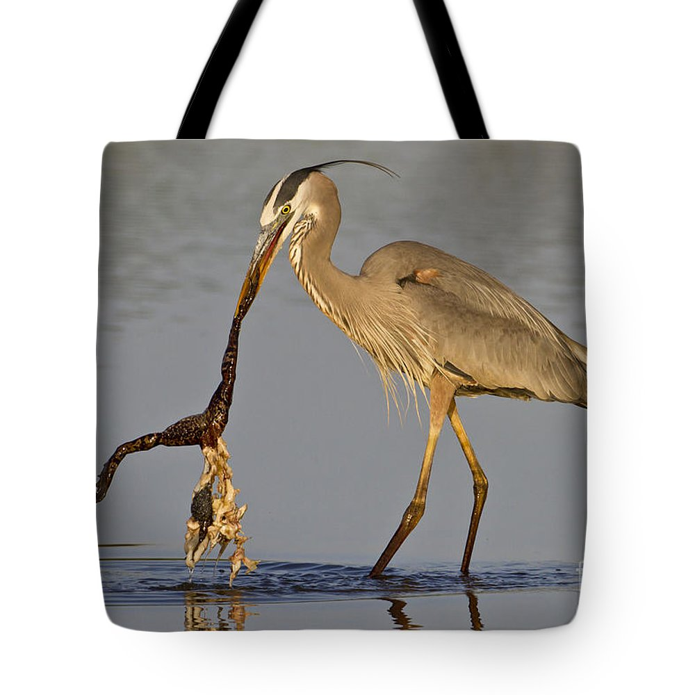 Great Blue Heron Tote Bag featuring the photograph Tastes Like Chicken by Bryan Keil