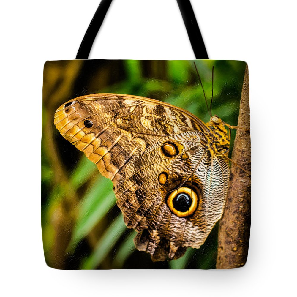 Butterflies Tote Bag featuring the photograph Tawny Owl Butterfly by Jon Burch Photography