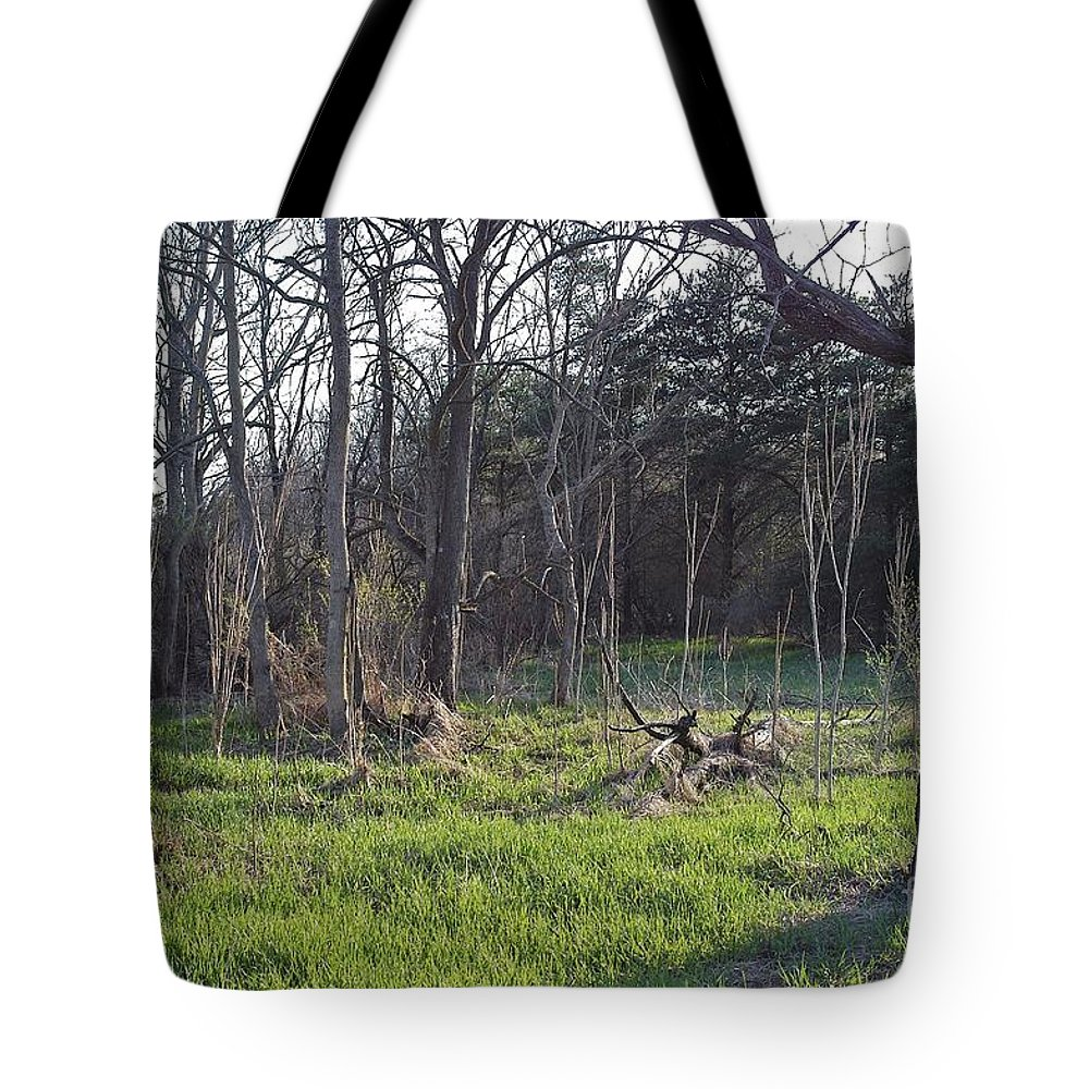 Spring Tote Bag featuring the photograph Temptation by Joseph Yarbrough