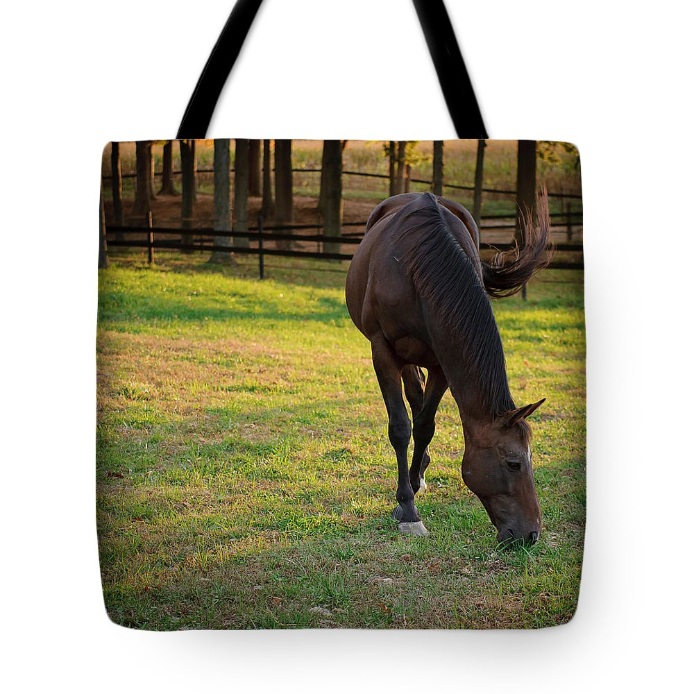 Equine Tote Bag featuring the photograph Tender Spring Grass by Kristi Swift