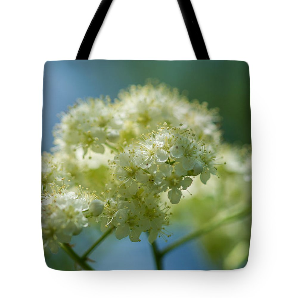 Abstract Tote Bag featuring the photograph Tender Whites by Alexander Senin