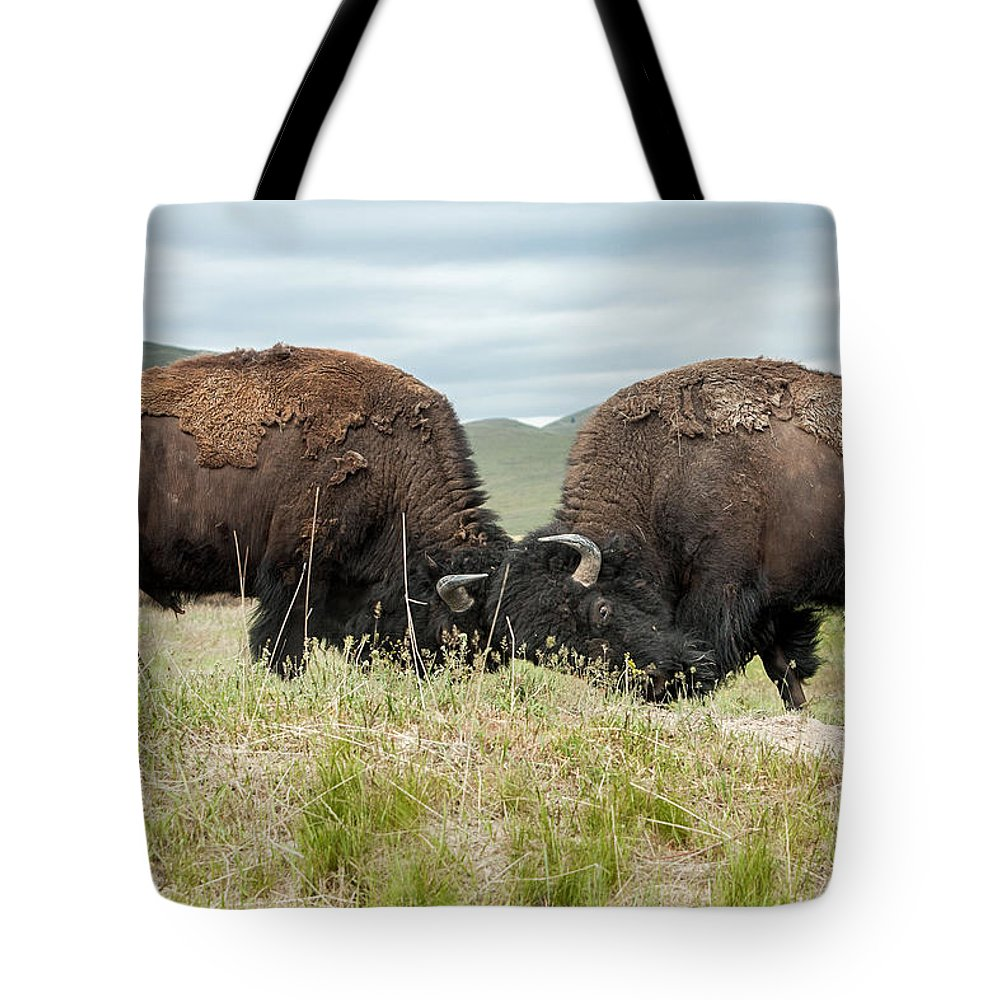 Bison Tote Bag featuring the photograph Test Of Strength by Jack Bell