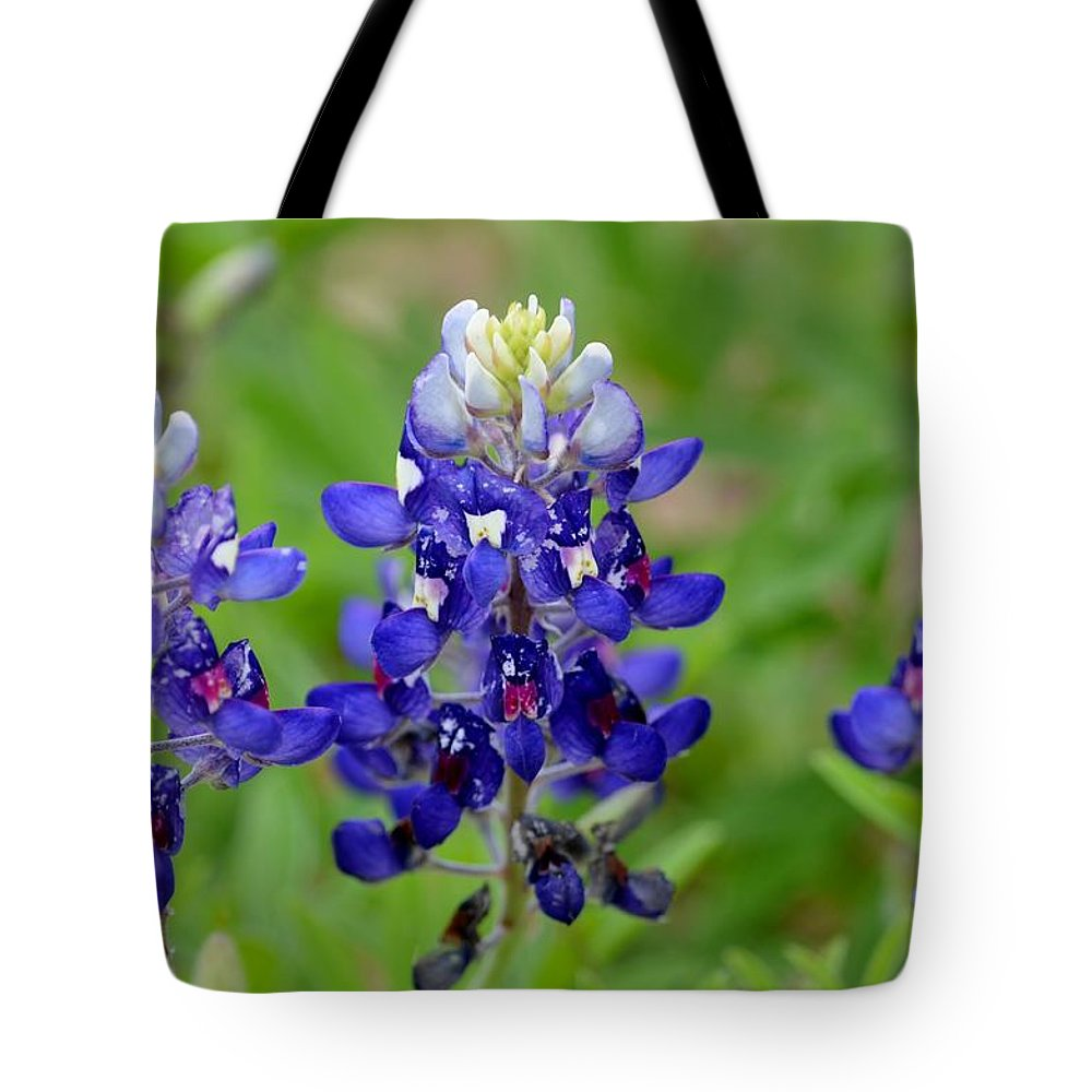 Texas Tote Bag featuring the photograph Texas Bluebonnets by Debra Martz
