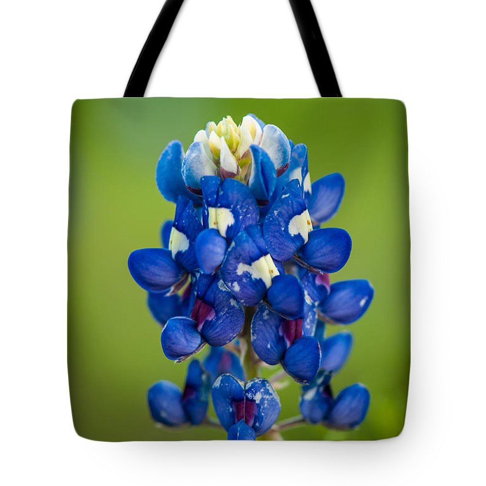 Texas Tote Bag featuring the photograph Texas Blue by George Buxbaum