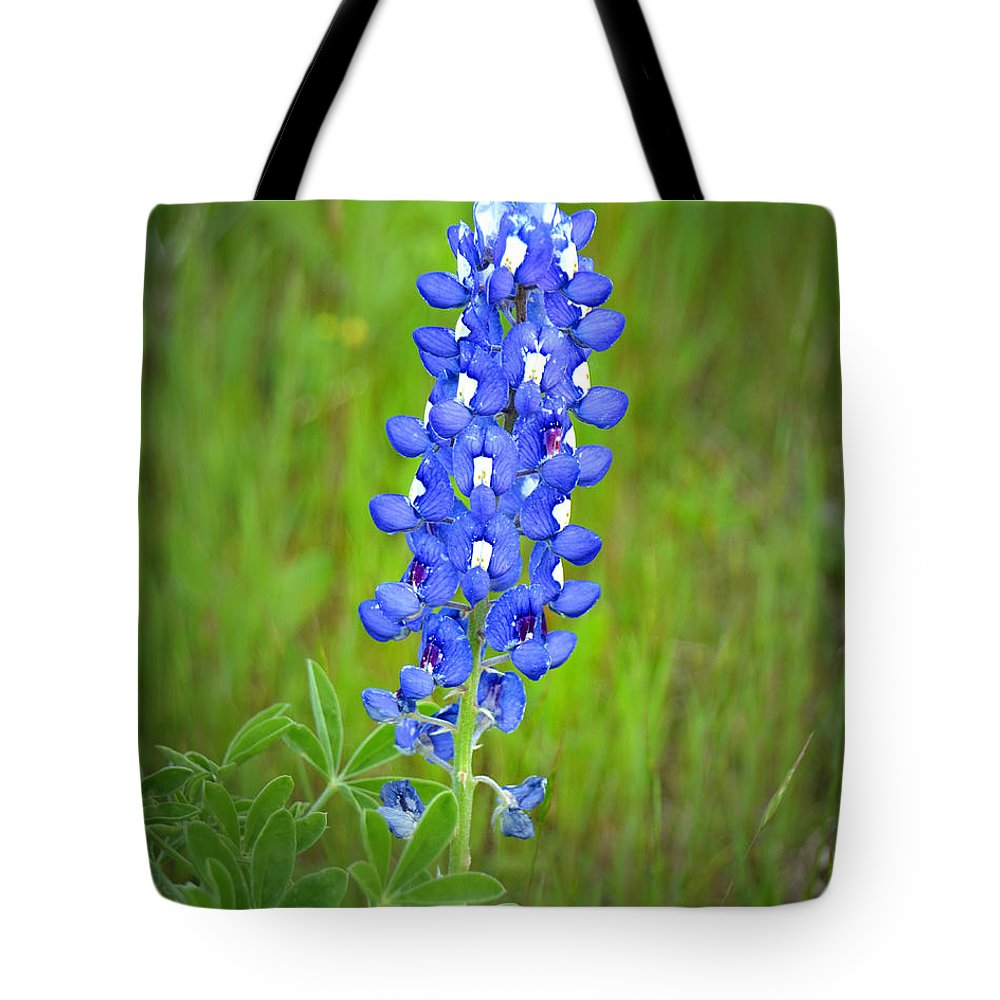 Texas Bluebonnet Wildflowers Landscape Flowers Blue Bonnet Tote