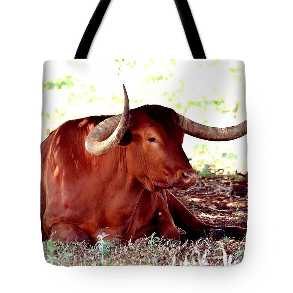 Linda Cox Tote Bag featuring the photograph Texas Is Longhorns by Linda Cox