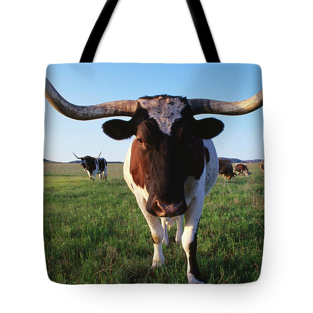 Horned Tote Bag featuring the photograph Texas Longhorn Cattle by John Elk