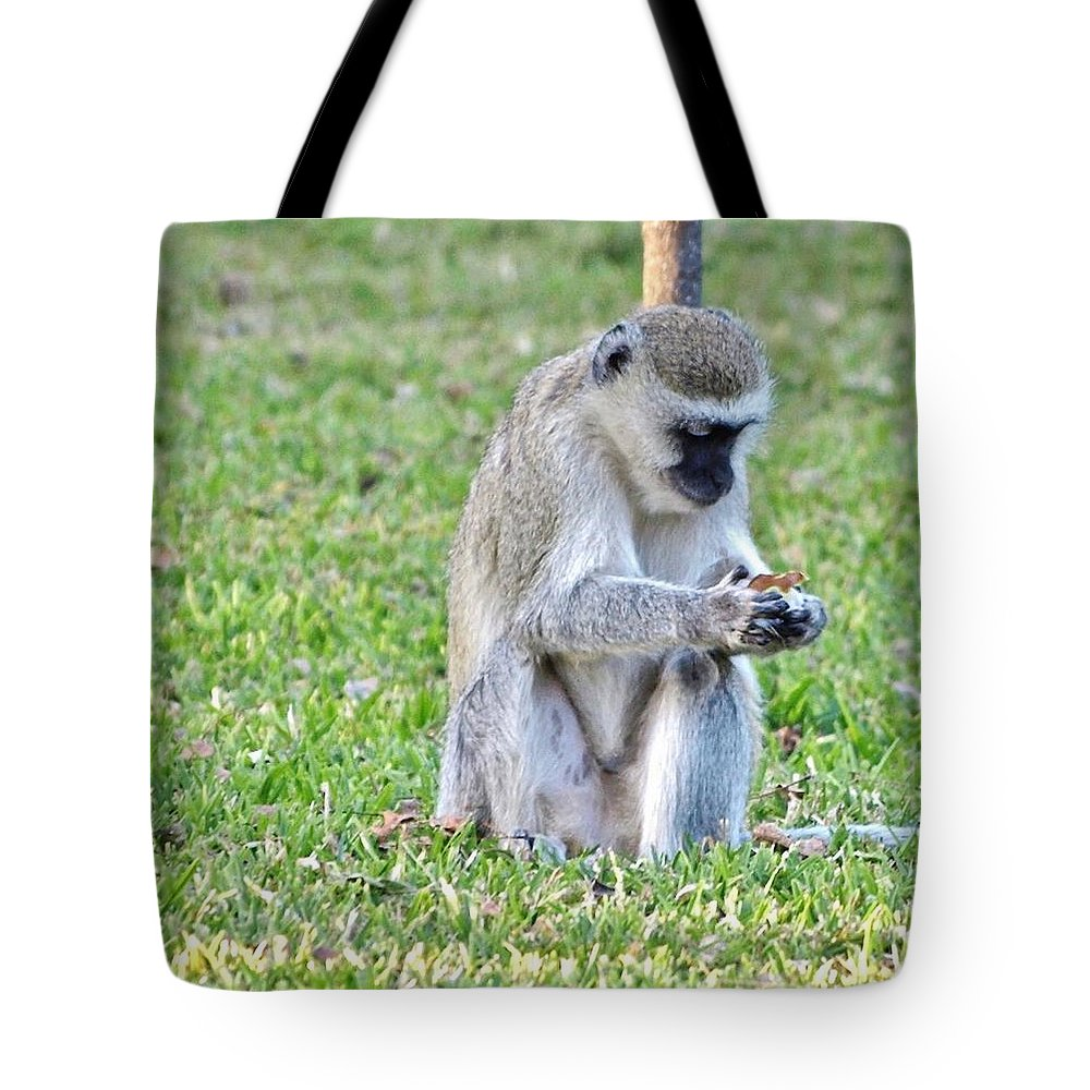 Africa Tote Bag featuring the photograph Texting Monkey by William Morgan