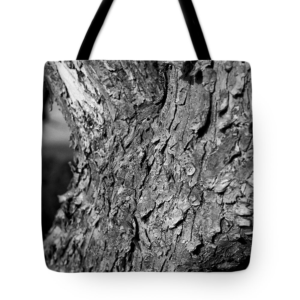 Dry Tote Bag featuring the photograph Texture In The Trees by Christi Kraft