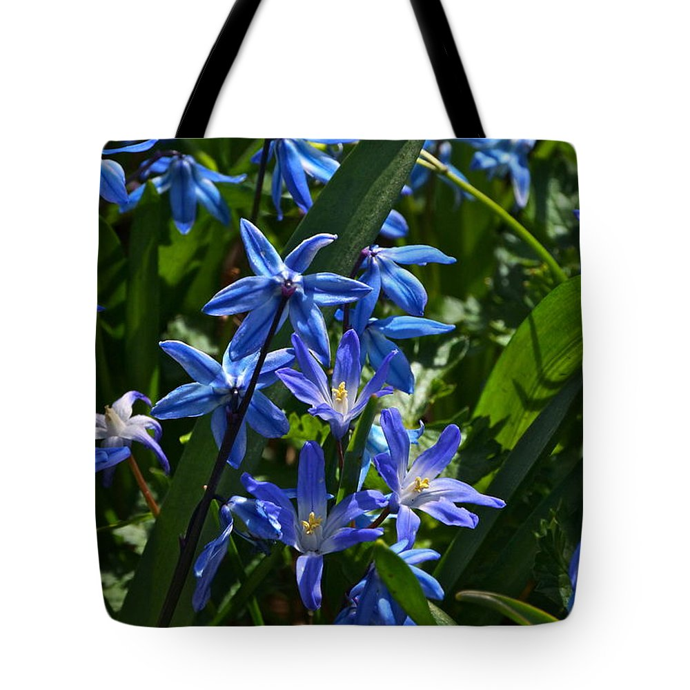 Scilla And Chionodoxa Flowers Tote Bag featuring the photograph Thank You by Byron Varvarigos