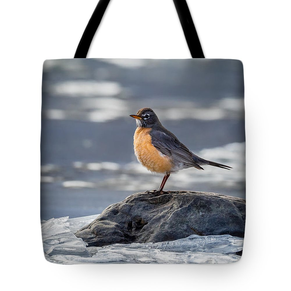 Robin Tote Bag featuring the photograph The American Robin by Bill Wakeley
