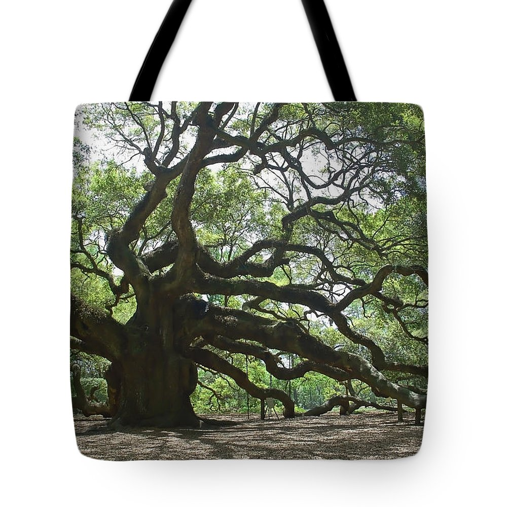 Angel Oak Tote Bag featuring the photograph The Angel Oak by Suzanne Gaff